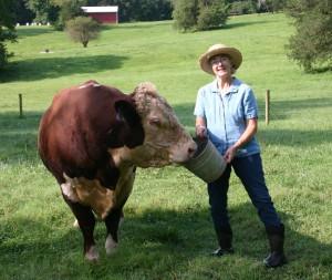 Ann with Dougie the Bull
